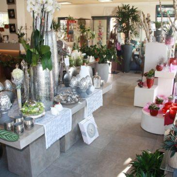 Wohn- und Geschäftshaus Floristik Specking in Legden